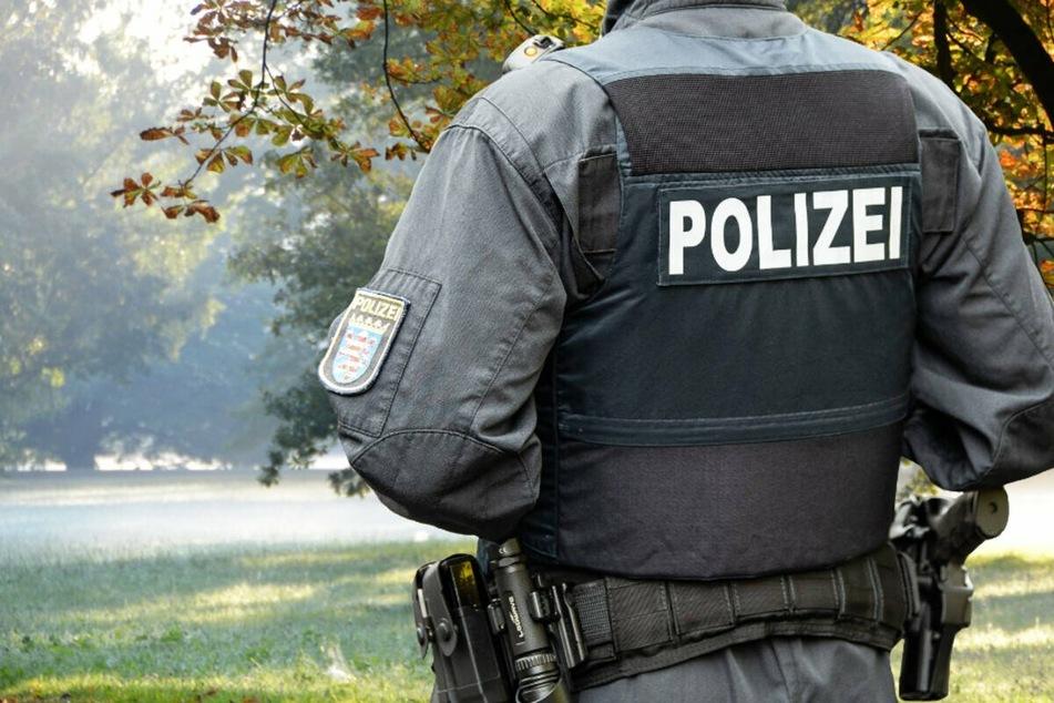 Junge Männer verschwinden rätselhaft im Wald: Polizei findet Henri und Nico