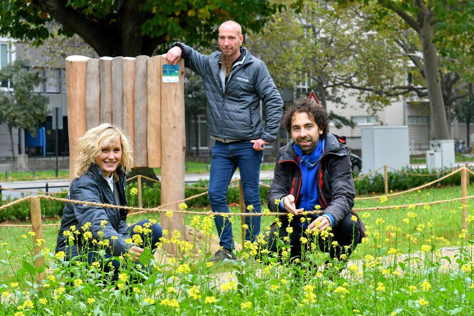 Lidia Sieniuta (34, l.) und Gabriel Koch (39, M.) von der Vonovia haben mit Robert Michalk (33) vom NABU die Wildblumenwiese samt Nisthilfen an der Blasewitzer Straße vorgestellt.