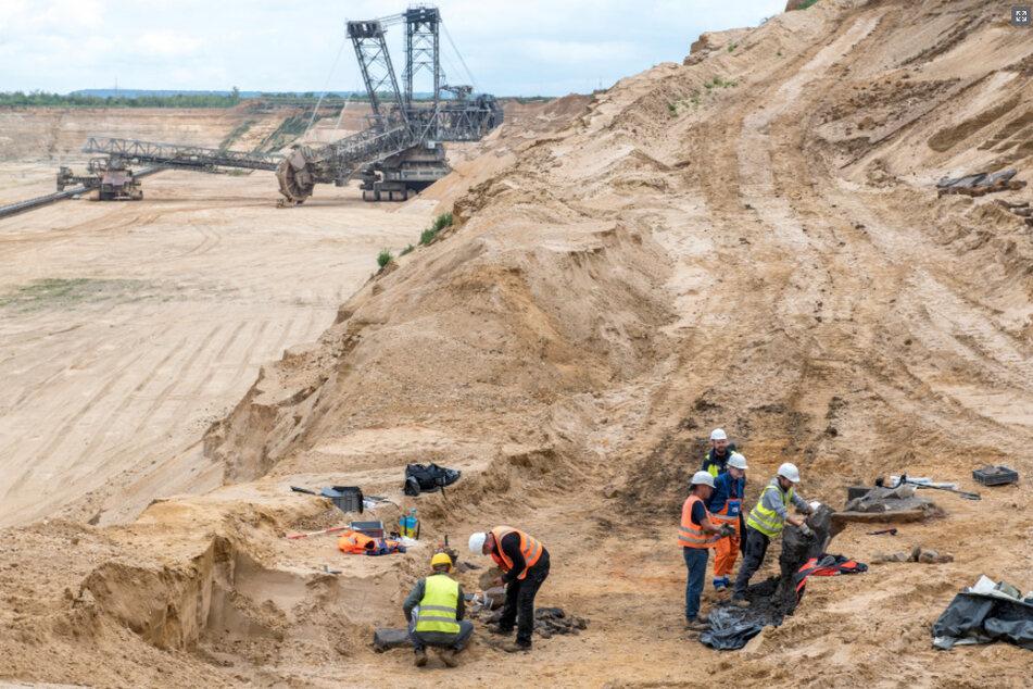 Sensationeller Fund bei Ausgrabung am Tagebau Hambach: Brunnen enthält riesige Säule!