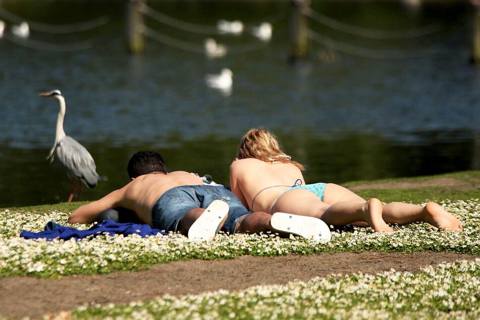 Ein Paar genießt die Sonne in einem Park (Symbolbild).