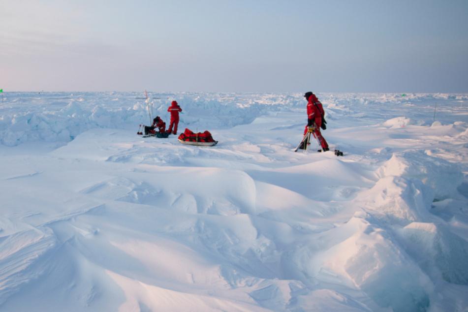 Forscher der Mosaic Expedition gehen über das Eis der Zentralarktis.