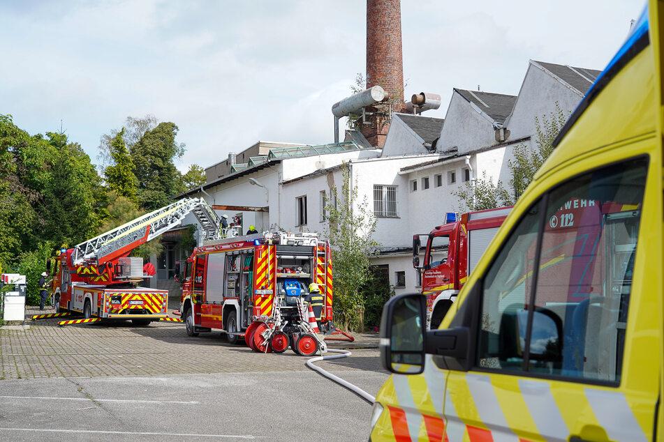 Unbekannte hatten in einer leerstehenden Industriehalle in Reichenbach offenbar ein Lagerfeuer entzündet. Die Feuerwehr musste ausrücken.