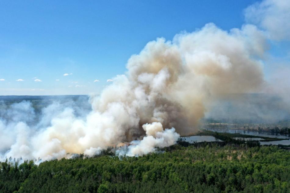 Nach großem Waldbrand im Loben-Moor: Feuerwehr löscht weiter