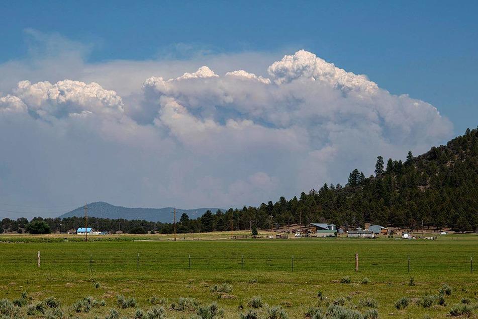 Rauch des Bootleg-Feuers steigt im Süden des US-Bundesstaates Oregon auf.