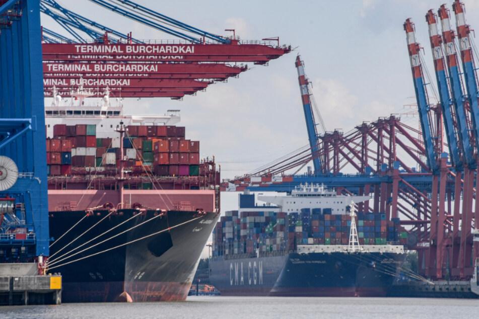 Krise am Hamburger Hafen? Umschlag bricht dramatisch ein