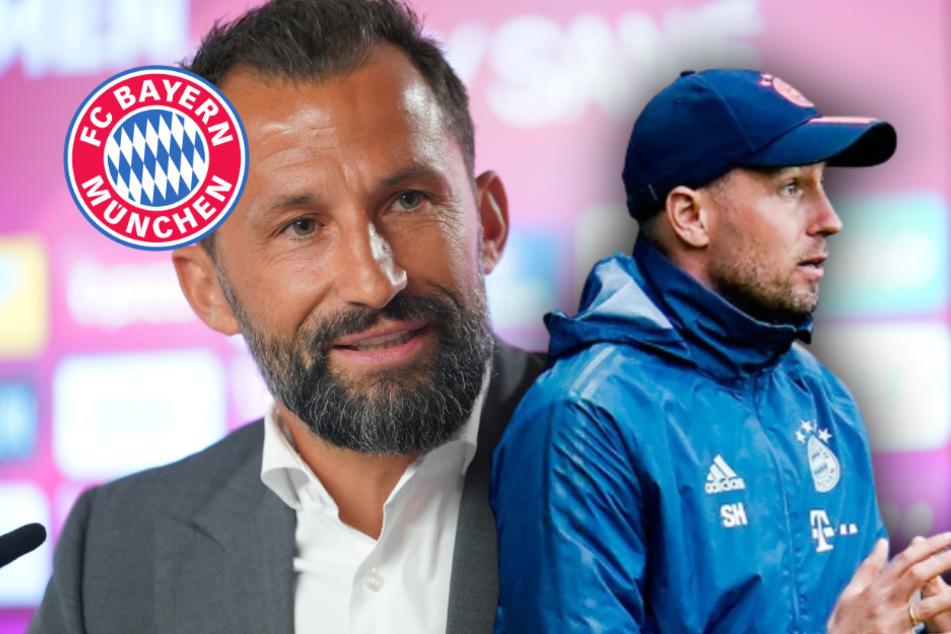 """FC Bayern entscheidet """"zeitnah"""" über Nachfolge von Sebastian Hoeneß"""