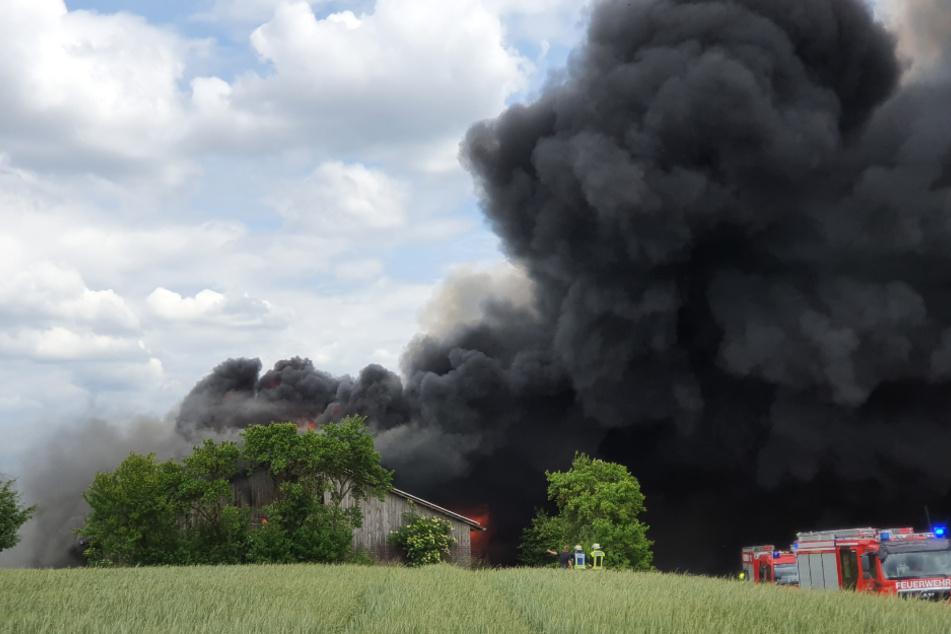 Das Feuer ist in einer Lagerhalle ausgebrochen, in dem die Puten gezüchtet wurden.