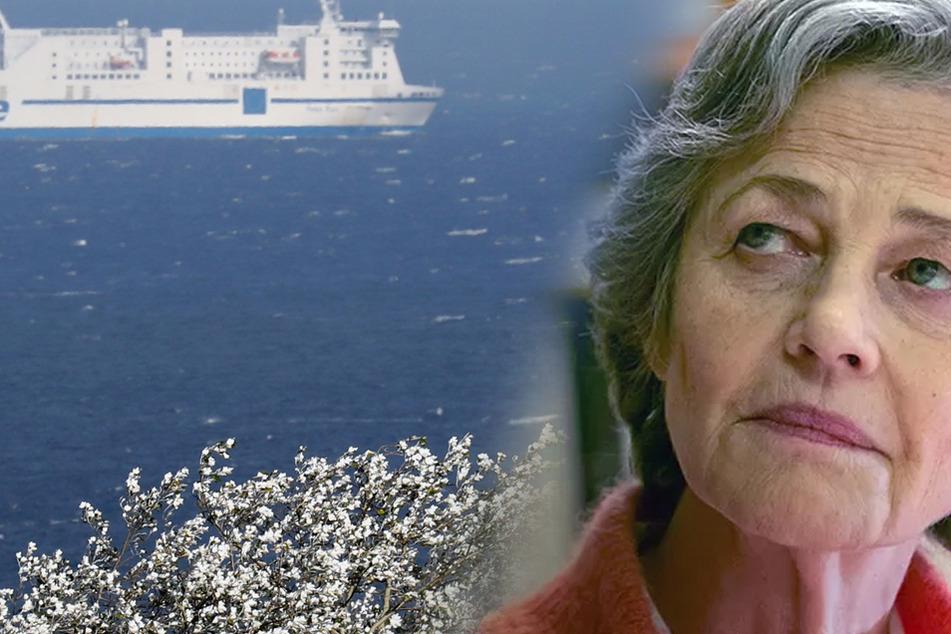 Kidnapping? Baby auf Ostsee-Fähre verschwunden
