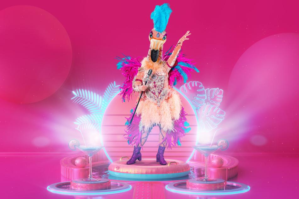 """Der Flamingo sorgt bei den """"The Masked Singer""""-Zuschauern für Uneinigkeit."""