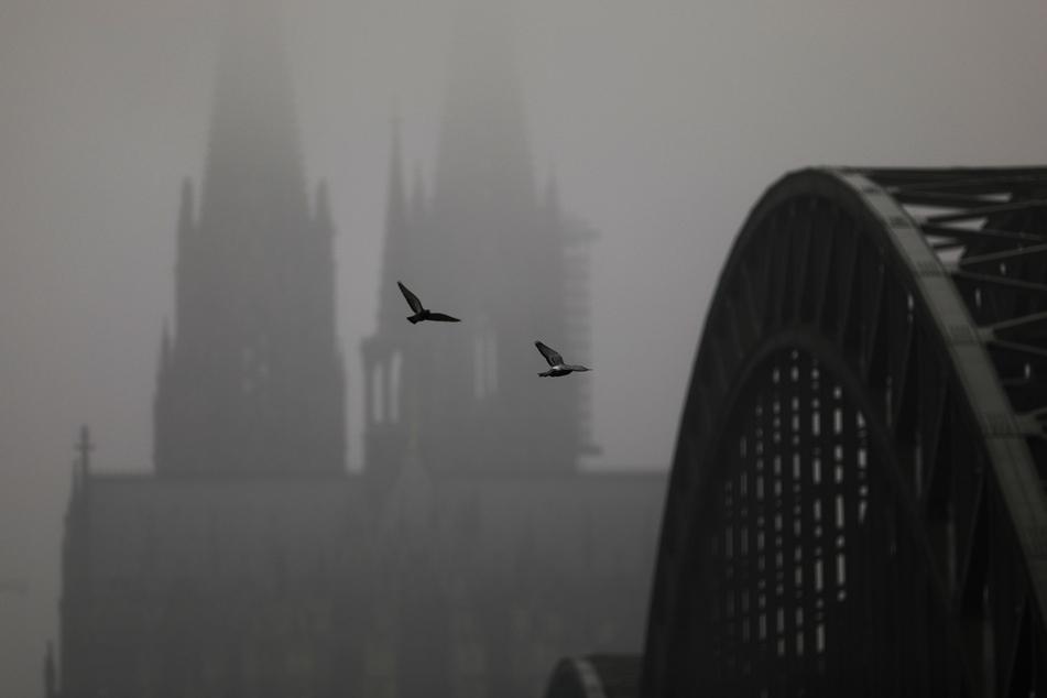Wetter in Köln und NRW: Erst Wolken, dann kühler und klarer Himmel