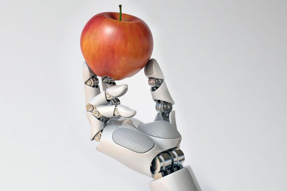 Wie sieht eigentlich die Ernährung der Zukunft aus?