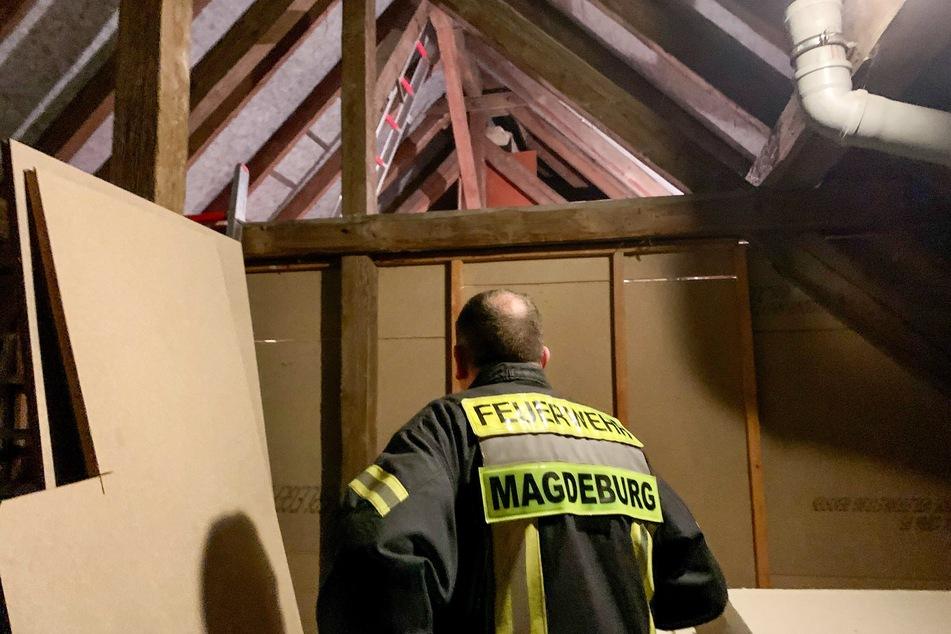 Mit Leitern trafen die Kameraden der Feuerwehr im Dachstuhl ein.