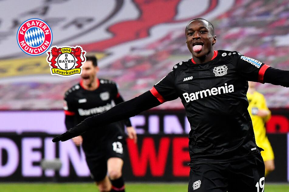 FC Bayern, Real und ManUnited jagen Leverkusen-Flügelflitzer!