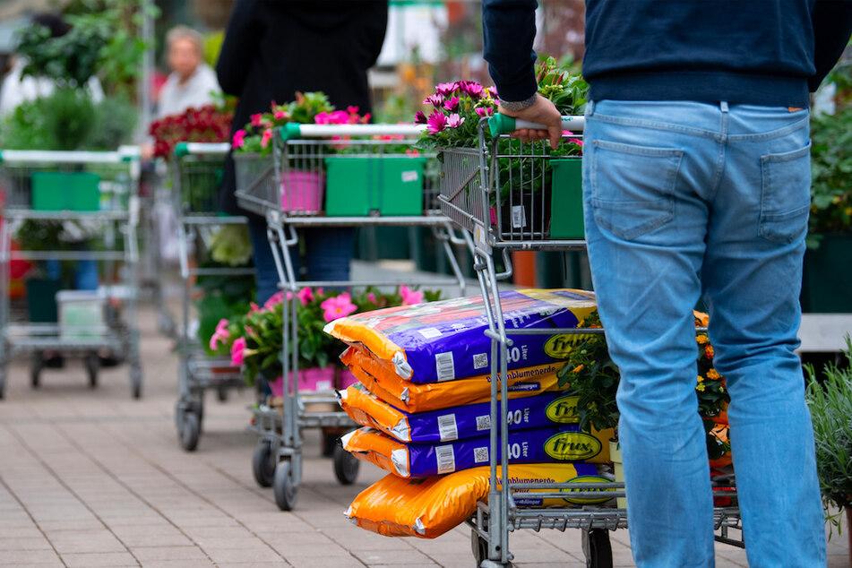 In Baumärkten rechnet man zum Frühlingsanfang nun mit einem großen Kundenandrang.