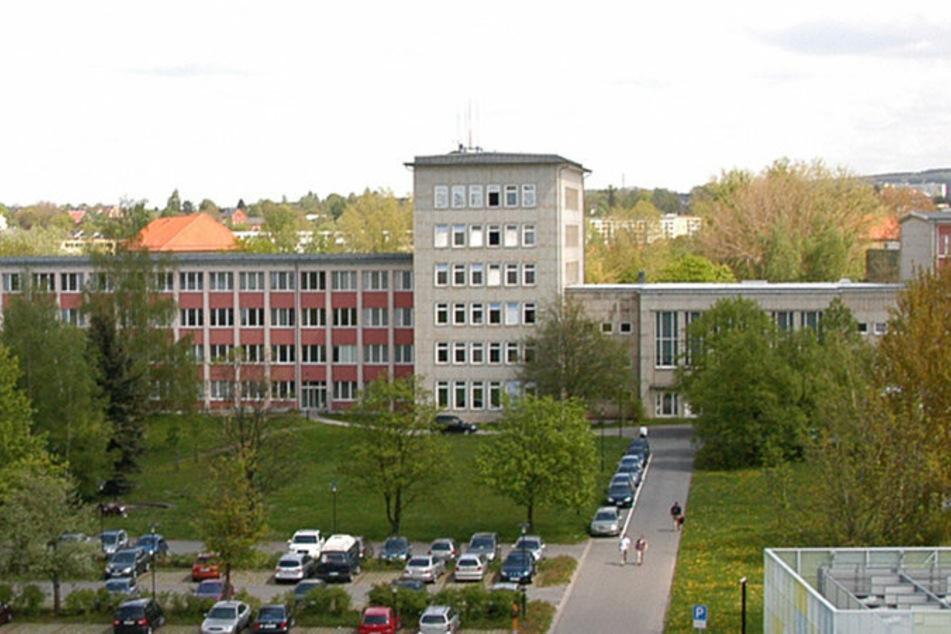 Ein Teil der Fläche zwischen dem Turmbau und dem Parkplatz soll ebenfalls zur Blühwiese werden.