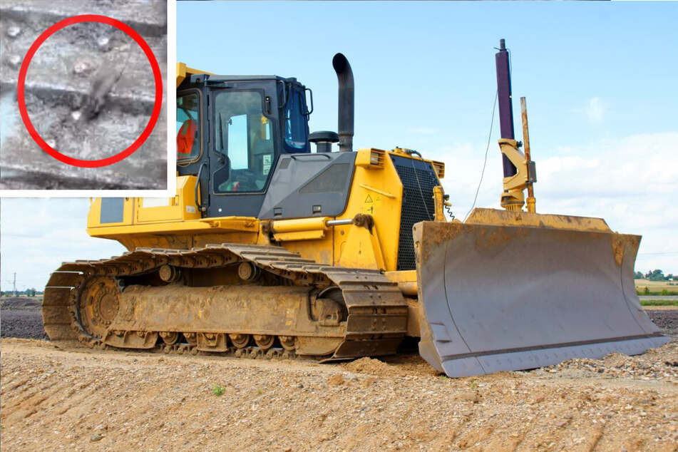 Of Mice and Men: construction workers capture mighty mouse's extreme workout