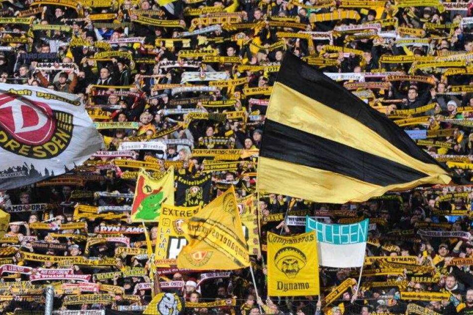 Dynamo-Fans rufen zu Demo in Magdeburg auf