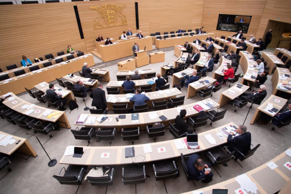 Der Landtag verabschiedete am Mittwochabend das neue Gesetz für mehr Artenschutz. (Archivbild)