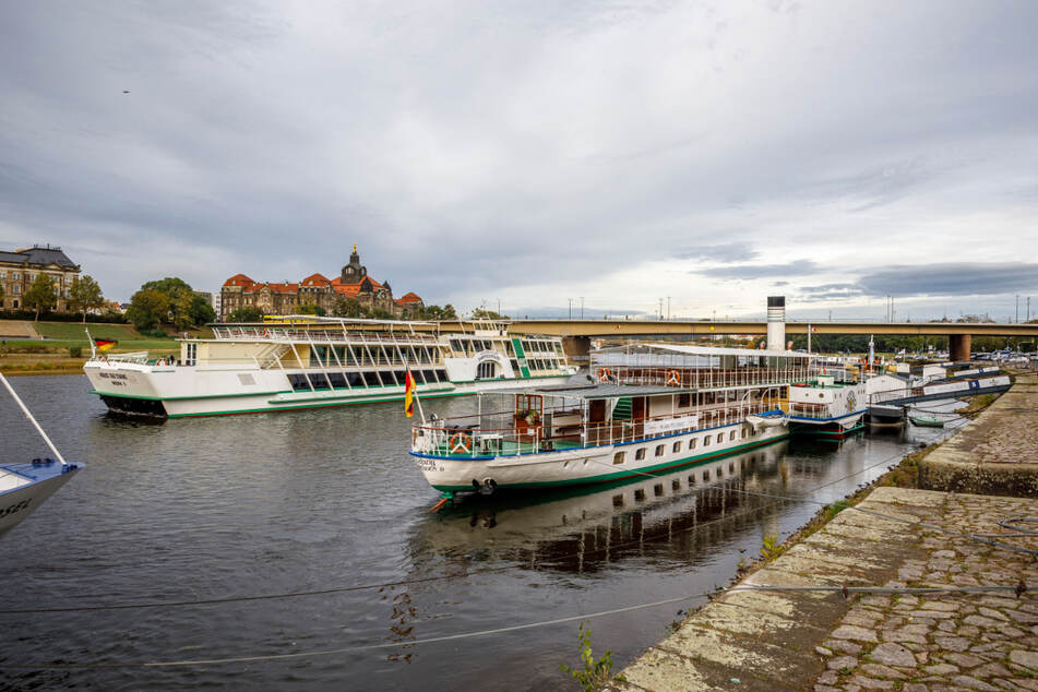 Bei der Sächsischen Dampfschifffahrt heißt es wieder: Leinen los!