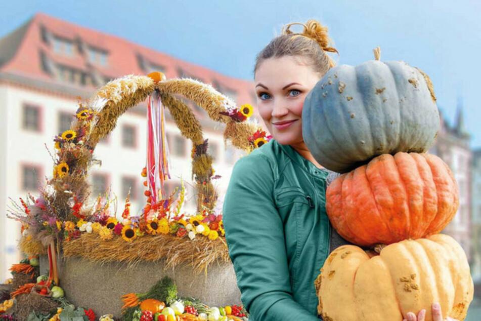 Die 44. Leipziger Markttage starten am heutigen Freitag.