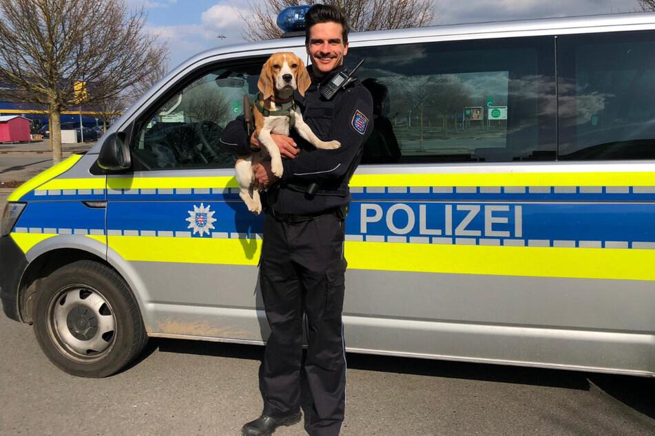 "Quer durch Thüringen: Hund ""Käthe"" nach stundenlanger Entführungsjagd gerettet"