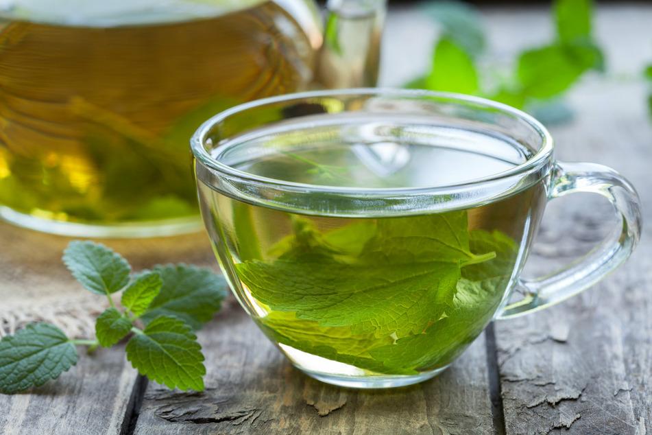 """Elf der getesteten Teeprodukte fielen mit """"mangelhaft"""" und """"ungenügend"""" durch. (Symbolbild)"""