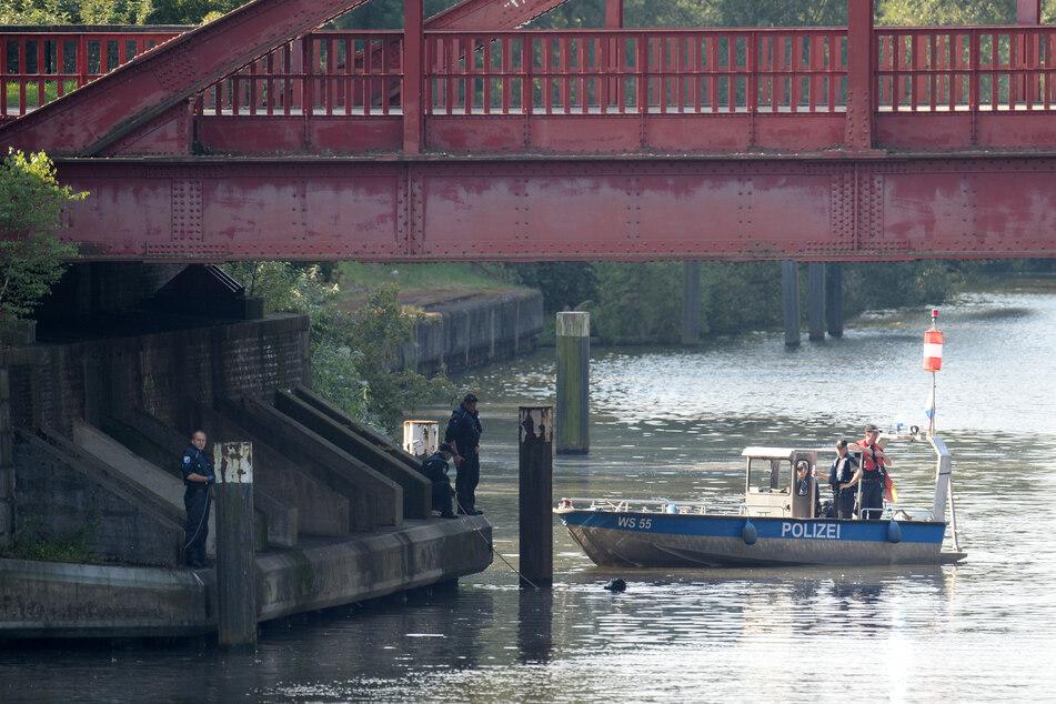 Taucher der Polizei suchen im Tiefstackkanal nach Leichenteilen.