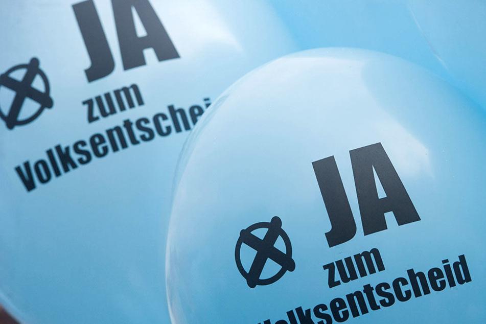 FDP befürwortet einen Volksentscheid und die Offenhaltung des innerstädtischen Flughafens. (Symbolbild)