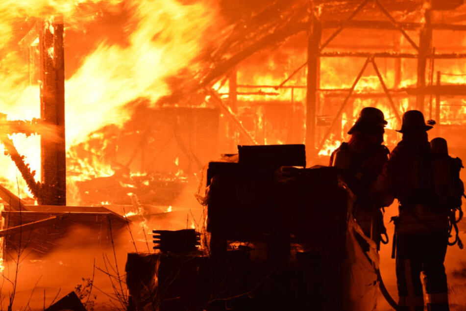 Holz-Betrieb brennt lichterloh: Feuerwehr kämpft gegen Flammen