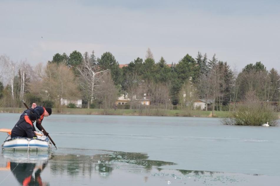 Mühsam kämpften sich die Retter über den zugefrorenen See zu dem Schwan (r.) heran.