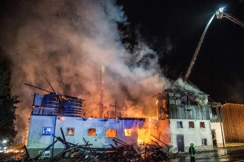 Die Lagerhalle auf dem Gestütshof brannte in der Nacht lichterloh.
