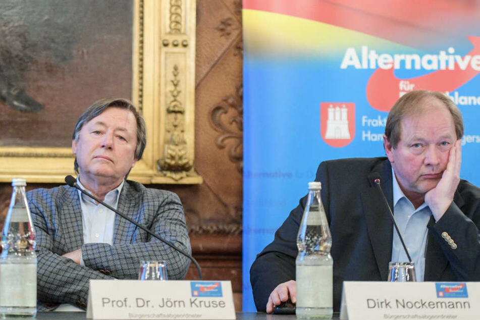 Streiten sich um die Art der Kritik: Jörn Kruse (link), Fraktionsvorsitzender der AfD in der Hamburgischen Bürgerschaft, und Dirk Nockemann, Landesverbandsvorsitzender der AfD (Archivbild).