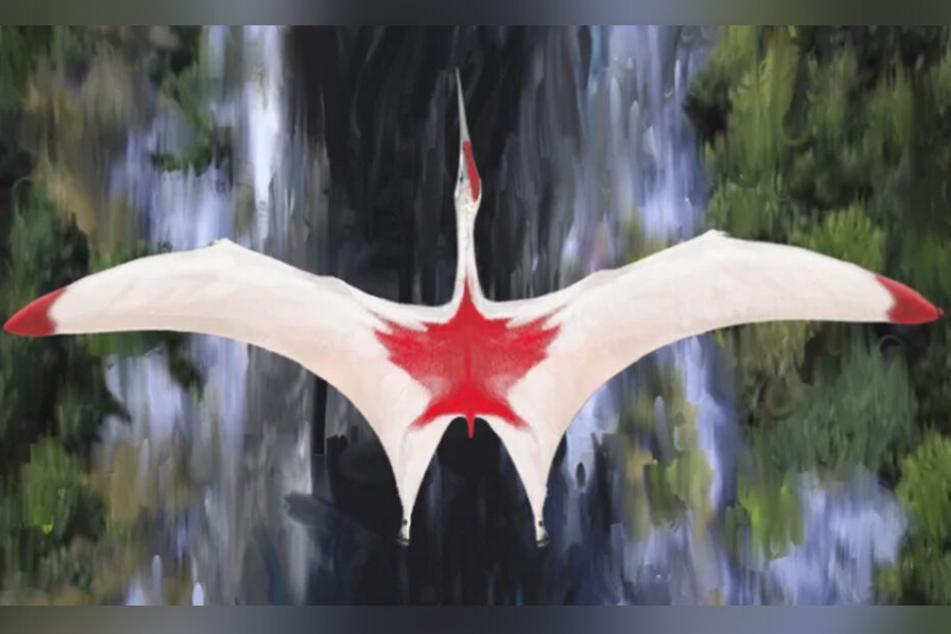 """So könnte der """"Cyrodrakon boreas"""" in etwa aus der Vogelperspektive ausgesehen haben."""