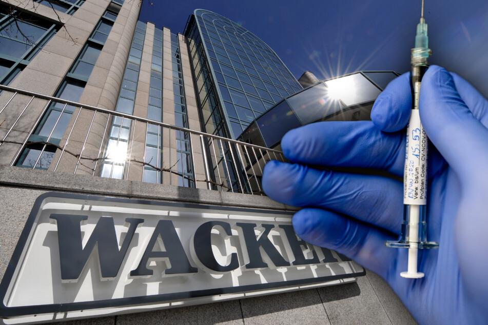 Die Münchner Wacker Chemie und der Tübinger Biotech-Konzern Curevac arbeiten bei der Produktion eines Impfstoffkandidaten gegen Covid-19 zusammen.