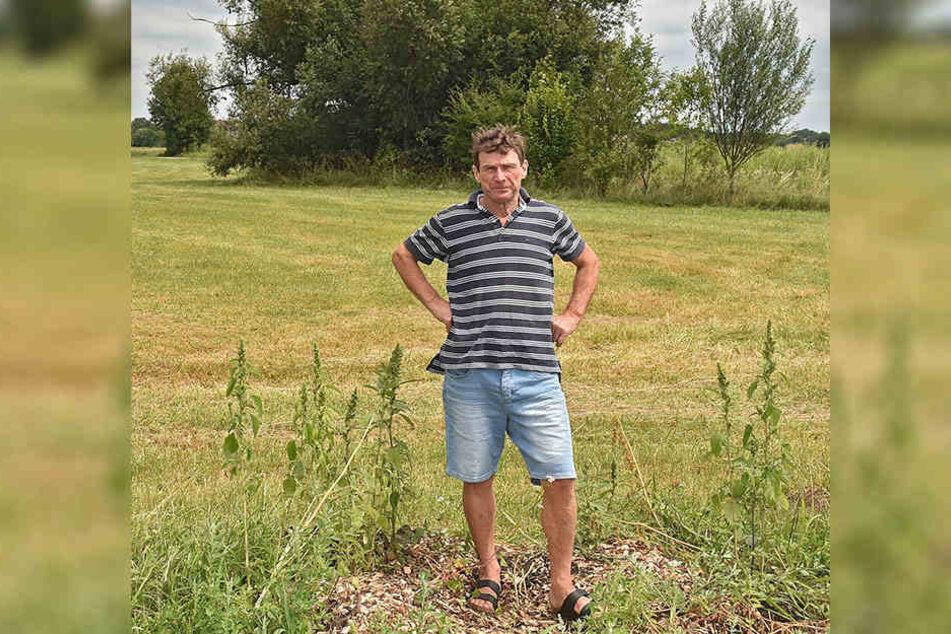 Bauunternehmer Gerald Förster (60) ärgert sich über den dreisten Baumklau.