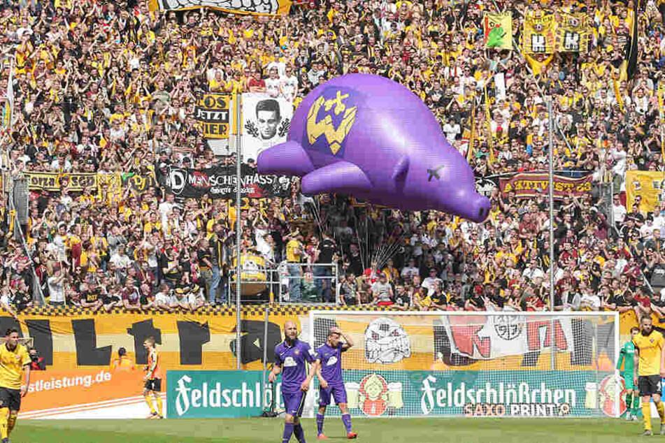 Beim Heimspiel gegen Aue am 30. April ließen die Fans das lila Schwein durch's Stadion schweben.