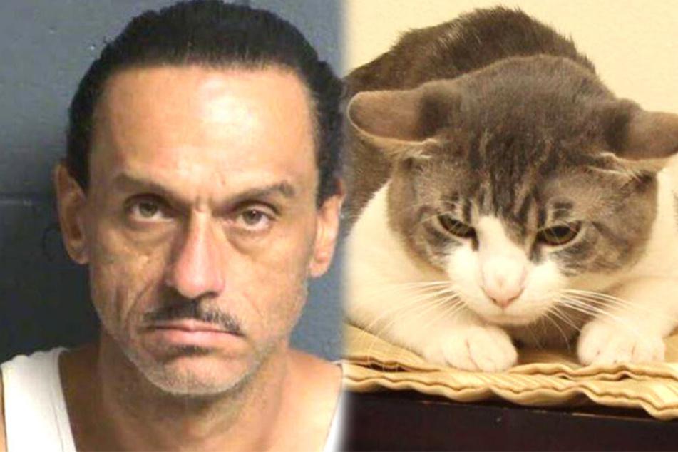 Aaron Spaulding (39), der seine Katze quälte, wurde ursprünglich nach gut 20 Tagen wieder freigelassen.