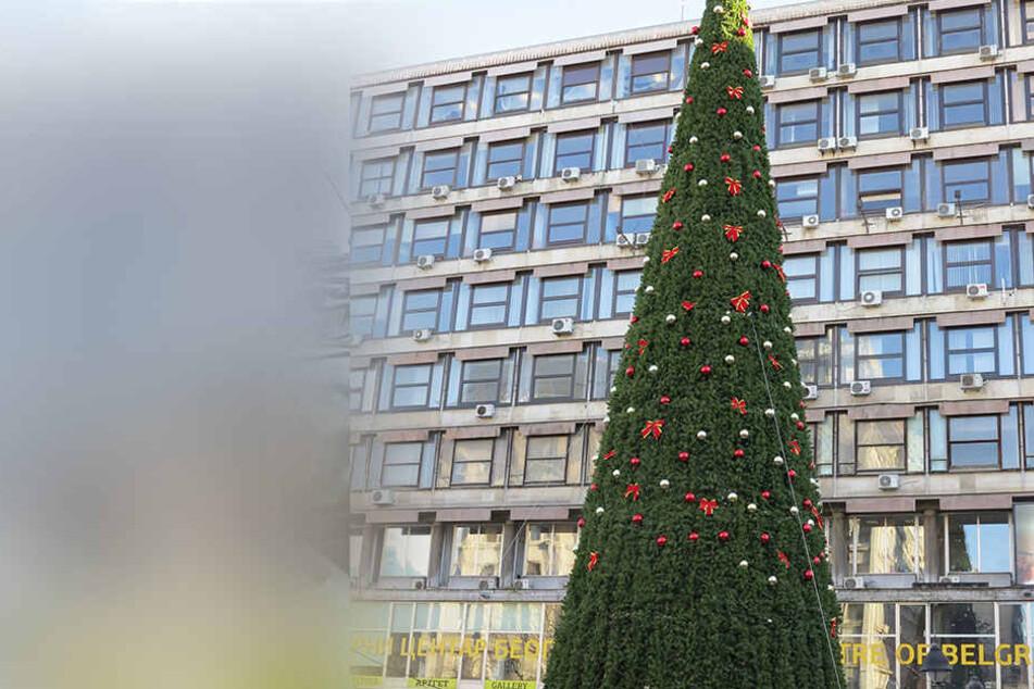 """Das soll der """"teuerste Weihnachtsbaum der Welt"""" sein."""