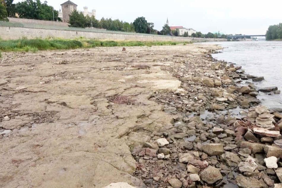 Noch 1 Zentimeter zum Niedrig-Rekord: Elbe-Pegel stark gesunken