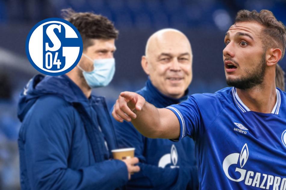 Schalke 04 schiebt nächstes Eigengewächs nach Huntelaar-Verpflichtung ab