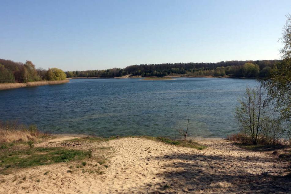 Im Süßen See in Sachsen-Anhalt sind E-Koli-Bakterien und Enterokokken gefunden worden. (Symbolbild)