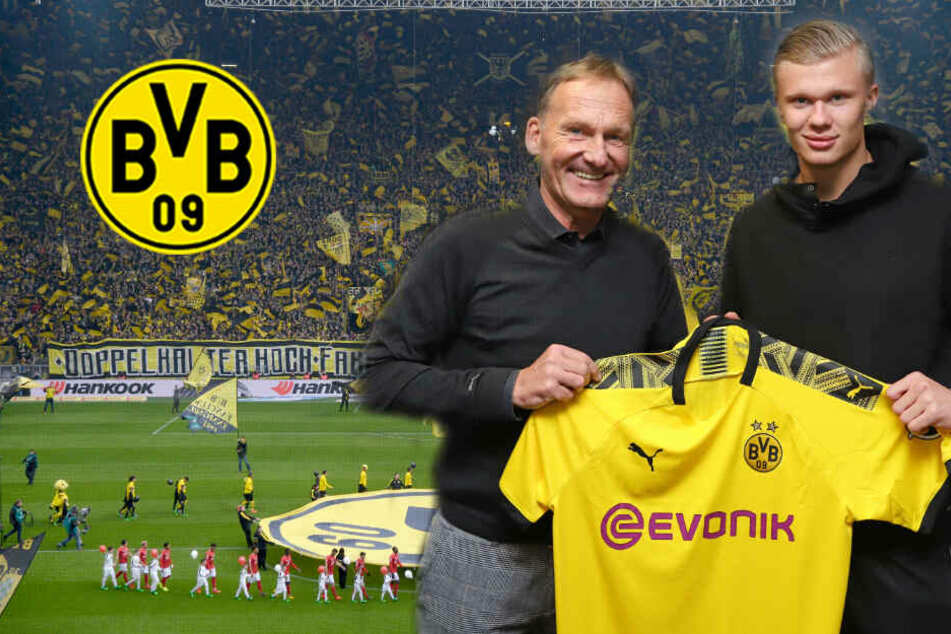 Die Tricks des BVB: Darum entschied sich Haaland für Dortmund!