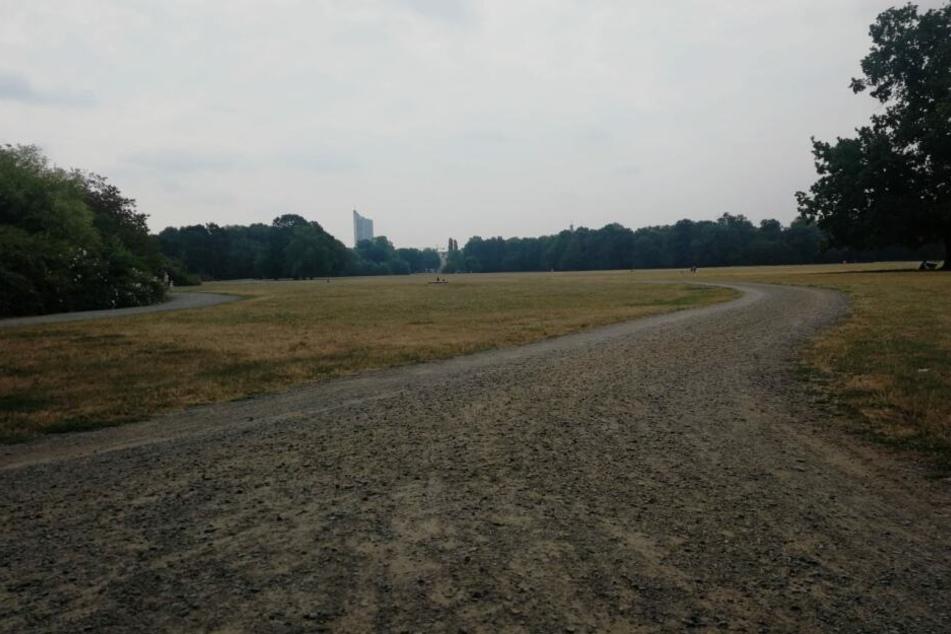 Das Leipziger Rosental ist eine Parkanlage mit angrenzendem Waldgebiet und besonders bei Joggern sehr beliebt.