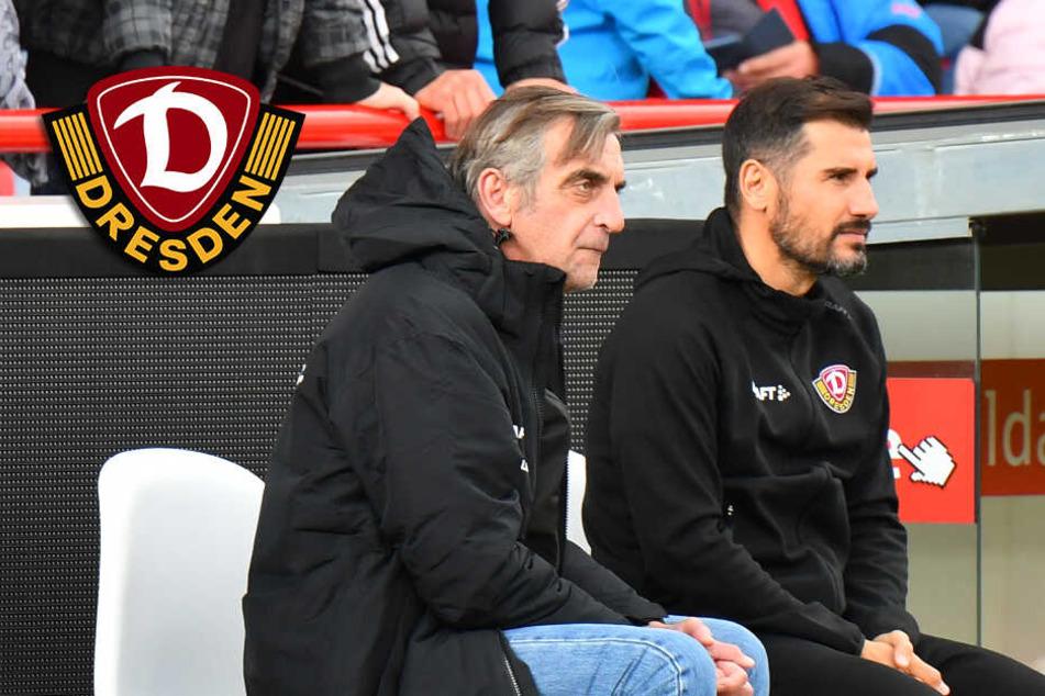 Dynamo-Krisengipfel im Stadion: Fiel nicht beim Training, Treffen mit Minge!