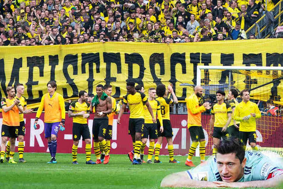 Schaut Ex-BVB-Stürmer Robert Lewandowski (r.) mit seinen Münchnern am Ende der Saison in die Röhre? Dortmund hat momentan alle Trümpfe in der Hand. (Bildmontage)