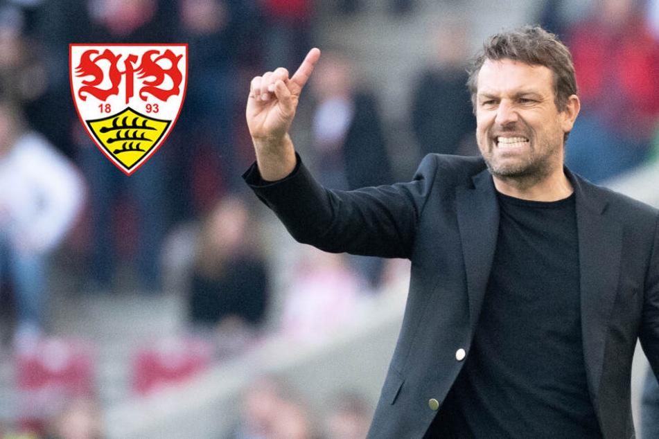 """VfB Stuttgart-Coach Markus Weinzierl: """"Bin heute ein besserer Trainer als 2014"""""""