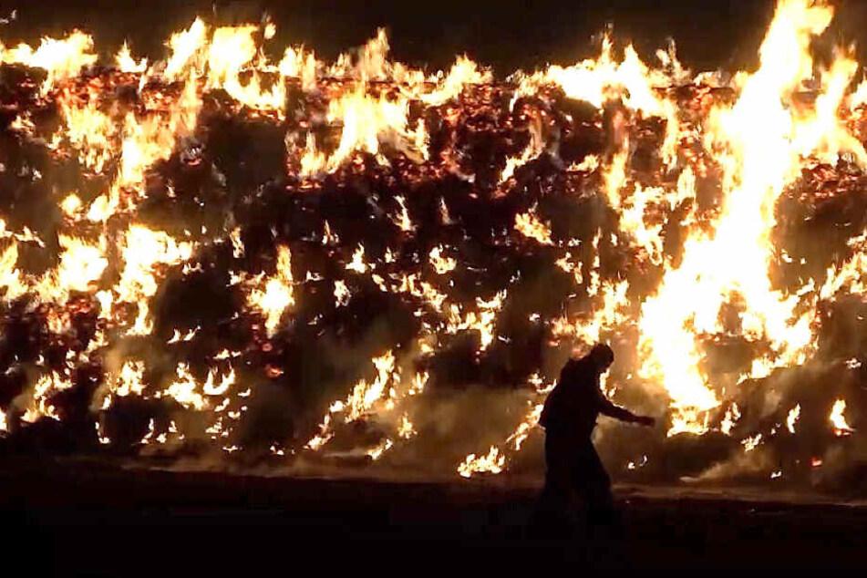 Feuerwehr kämpft gegen Flammenmeer, starker Wind erschwert Löscheinsatz
