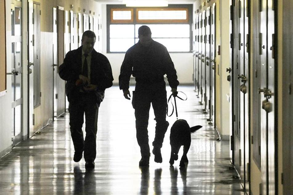Zwei Beamte und ein Drogenhund gehen durch die JVA Dresden. Berliner Gefängnisse sollen keinen eigenen Spürhunde bekommen.