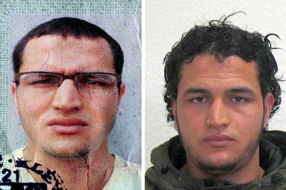 Fahndungsfotos, mit denen nach Amri nach dem Anschlag auf dem Breitscheidplatz gesucht wurde.