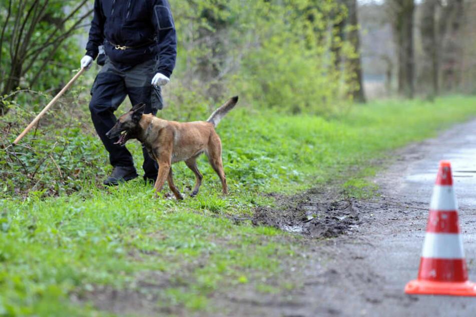 Die Polizei suchte mit einem Leichenspürhund nach den sterblichen Überresten des seit dem Jahr 2000 vermissten Mannes (Symbolbild).